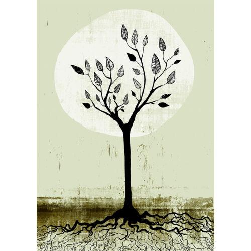 fekete fa